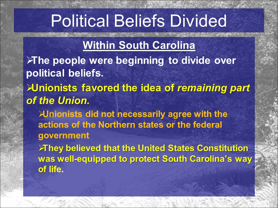 Within South Carolina  The people were beginning to divide over political beliefs.
