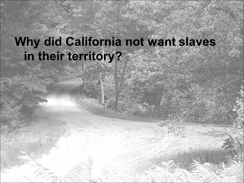Why did California not want slaves in their territory?