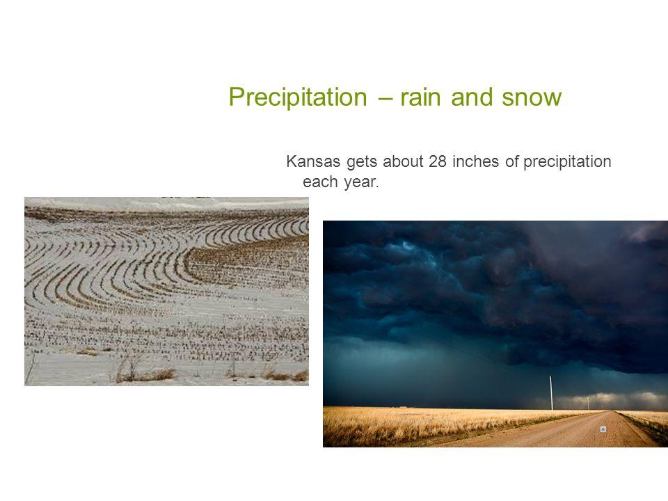 Kansas has four seasons: winter, spring, summer, fall