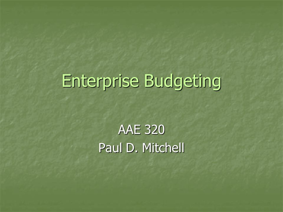 Enterprise Budgeting AAE 320 Paul D. Mitchell