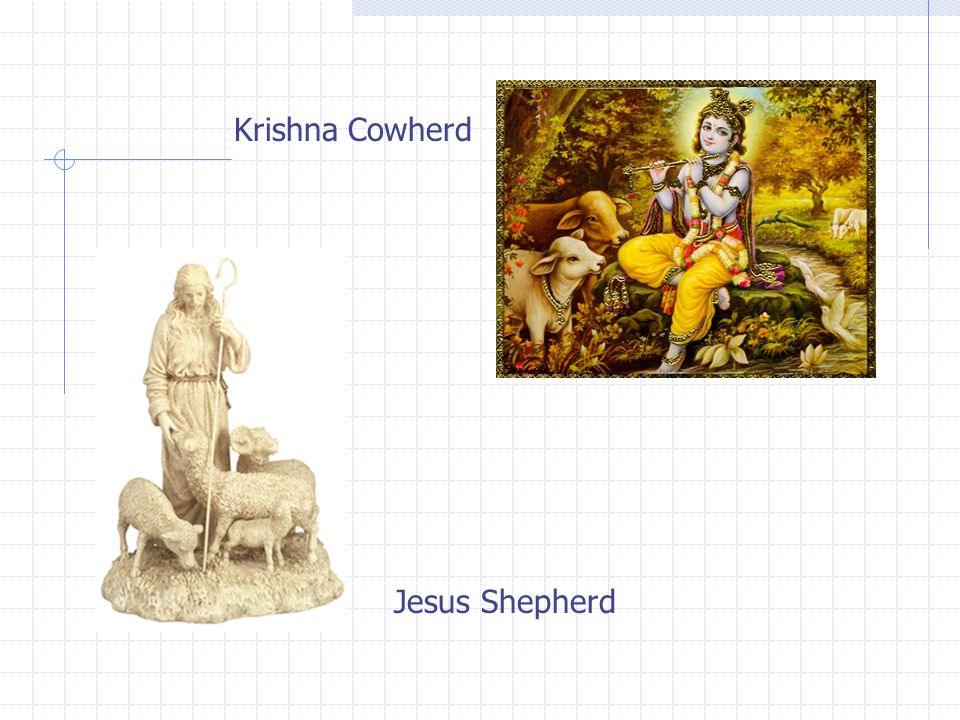 Both are believed to be sons of God, since they were divinely conceived The birth of both Jesus of Nazareth and Krishna of Dwarka and their God-designed missions were foretold Both were born at unusual places - Christ in a lowly manger and Krishna in a prison cell Both were divinely saved from death pronouncements Evil forces pursued both Christ and Krishna in vain Christ is often depicted as a shepherd; Krishna was a cowherd Both appeared at a critical time when their respective countries were in a torpid state Both died of wounds caused by sharp weapons - Christ by nails and Krishna by an arrow The teachings of both are very similar - both emphasize love and peace Krishna was often shown as having a dark blue complexion - a color close to that of Christ Consciousness.