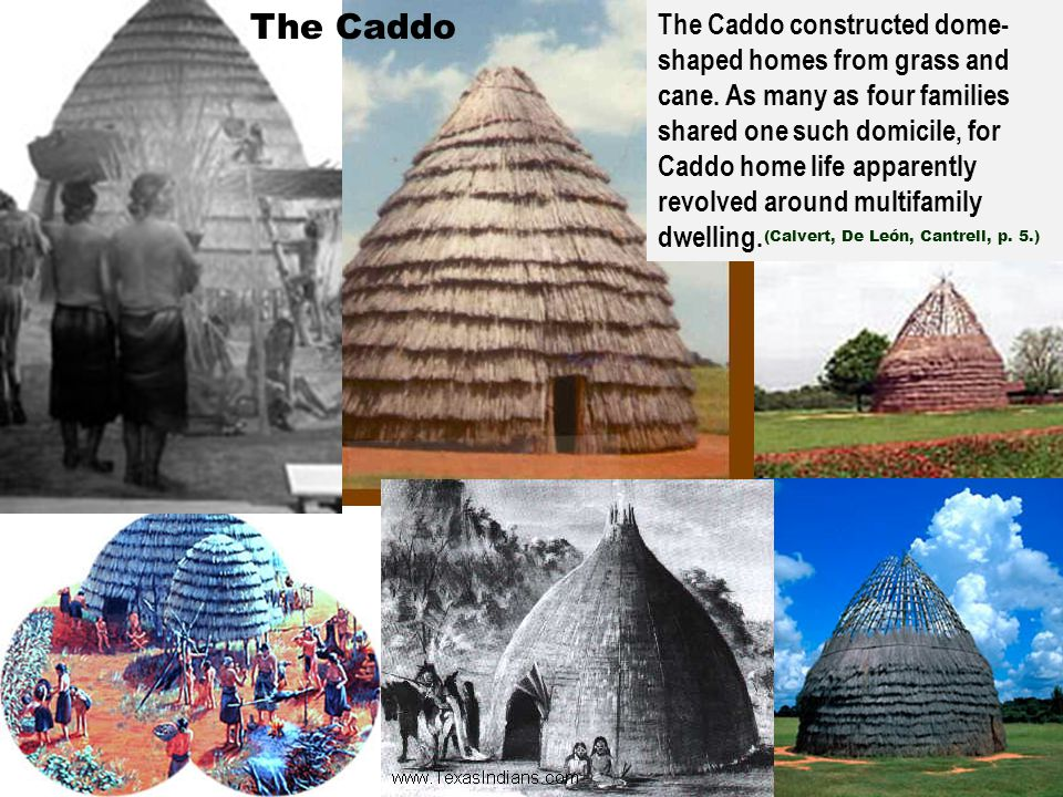 The Caddo The Caddo constructed dome- shaped homes from grass and cane. As many as four families shared one such domicile, for Caddo home life apparen