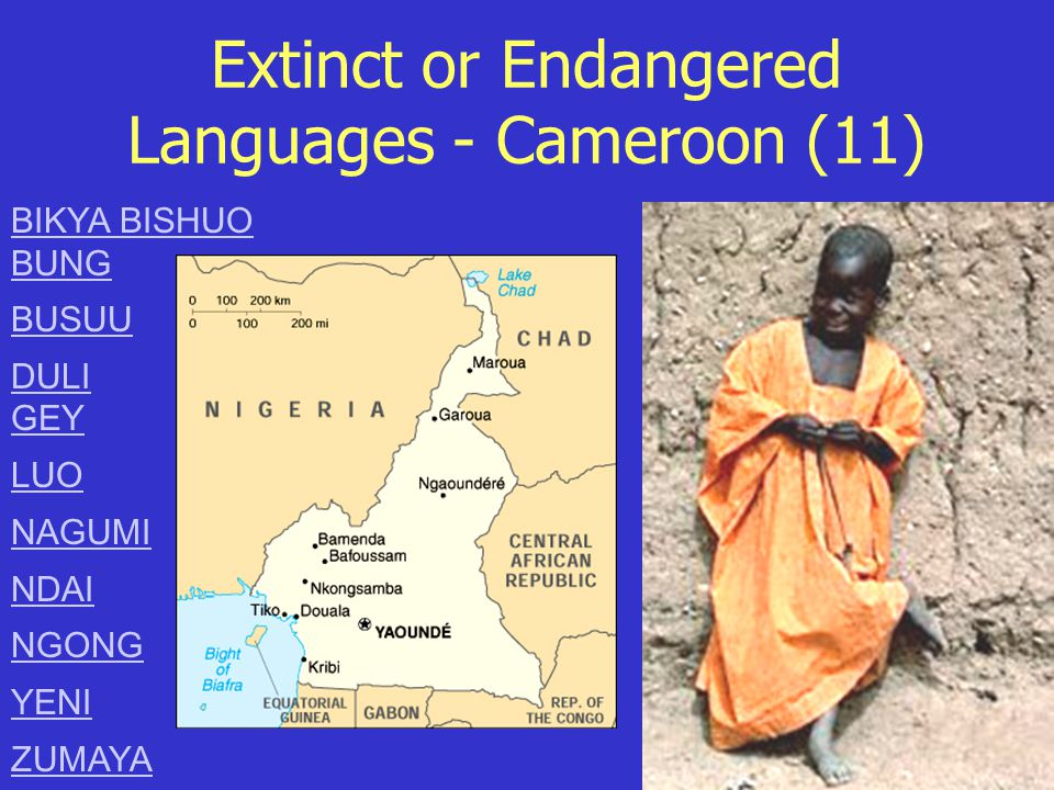 Extinct or Endangered Languages - Cameroon (11) BIKYA BISHUO BUNG BUSUU DULI GEY LUO NAGUMI NDAI NGONG YENI ZUMAYA