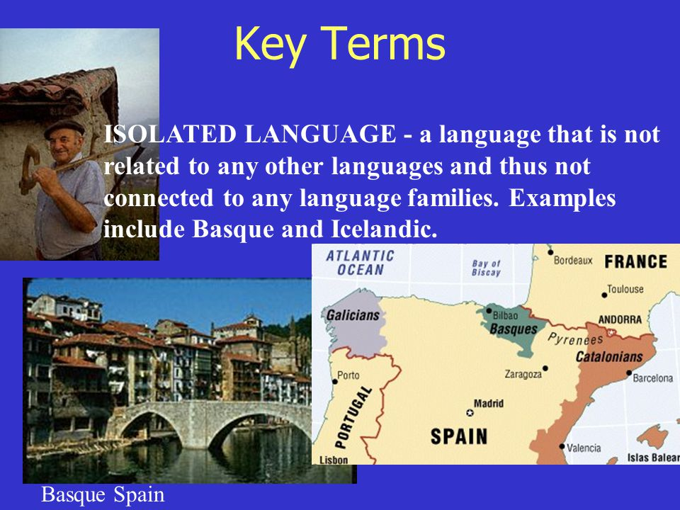 Key Terms ISOLATED LANGUAGE - a language that is not related to any other languages and thus not connected to any language families. Examples include