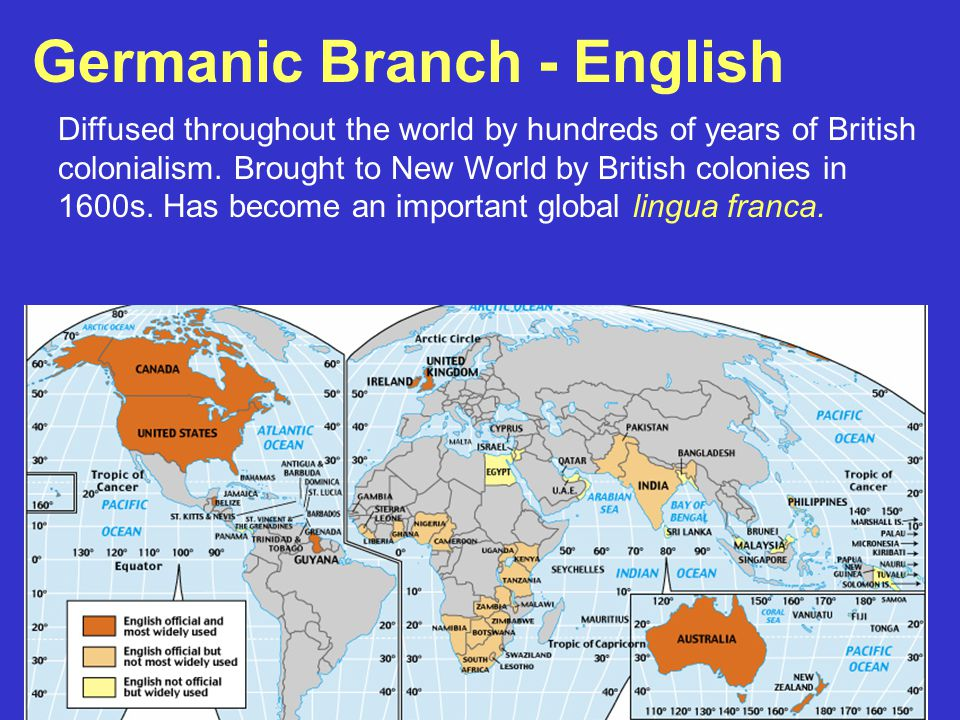 Germanic Branch - English Diffused throughout the world by hundreds of years of British colonialism. Brought to New World by British colonies in 1600s