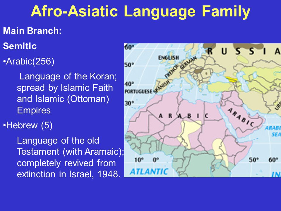 Afro-Asiatic Language Family Main Branch: Semitic Arabic(256) Language of the Koran; spread by Islamic Faith and Islamic (Ottoman) Empires Hebrew (5) Language of the old Testament (with Aramaic); completely revived from extinction in Israel, 1948.