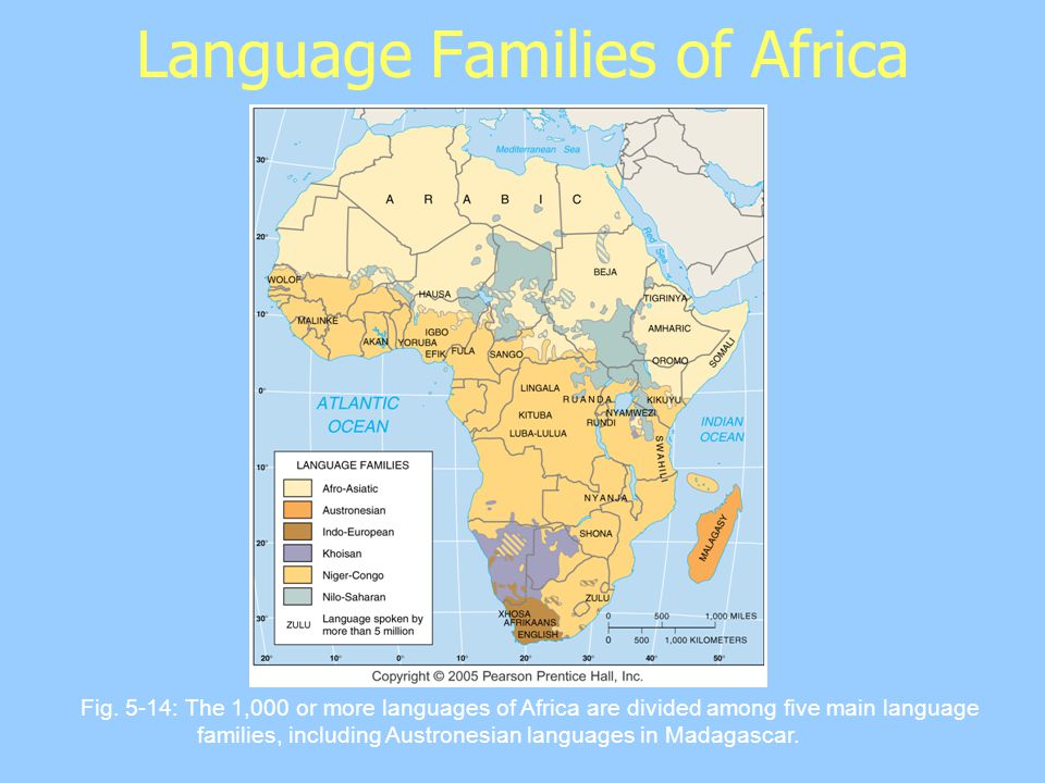 Language Families of Africa Fig.