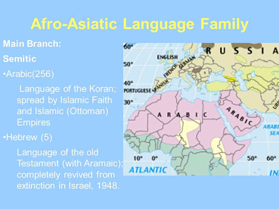 Afro-Asiatic Language Family Main Branch: Semitic Arabic(256) Language of the Koran; spread by Islamic Faith and Islamic (Ottoman) Empires Hebrew (5)