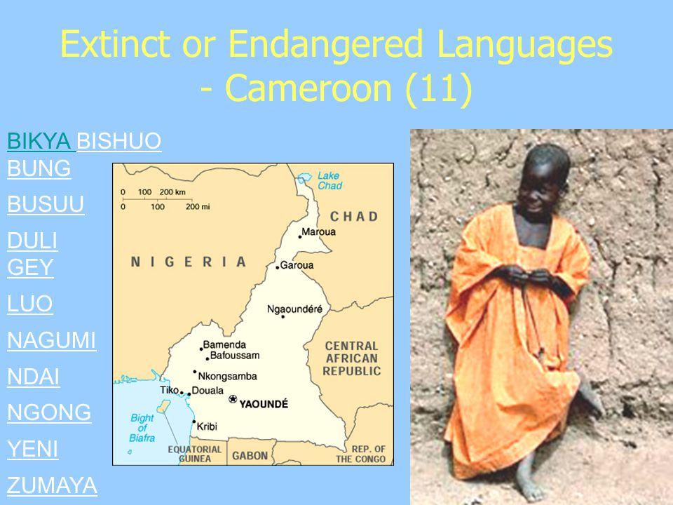 Extinct or Endangered Languages - Cameroon (11) BIKYA BIKYA BISHUO BUNG BUSUU DULI GEY LUO NAGUMI NDAI NGONG YENI ZUMAYA
