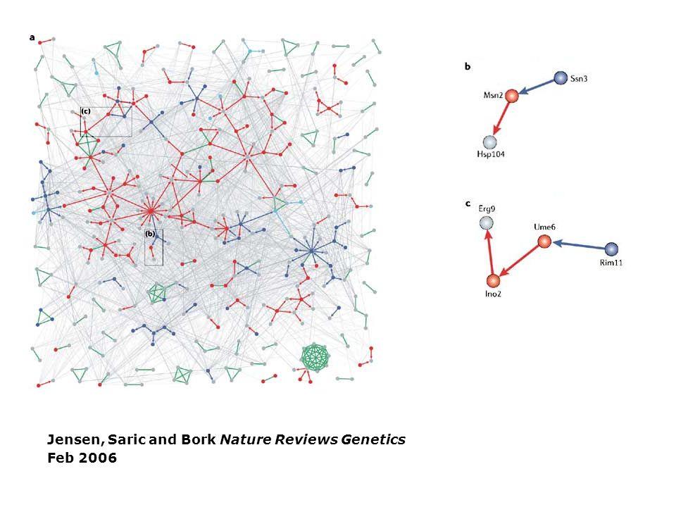 www.plos.org Jensen, Saric and Bork Nature Reviews Genetics Feb 2006