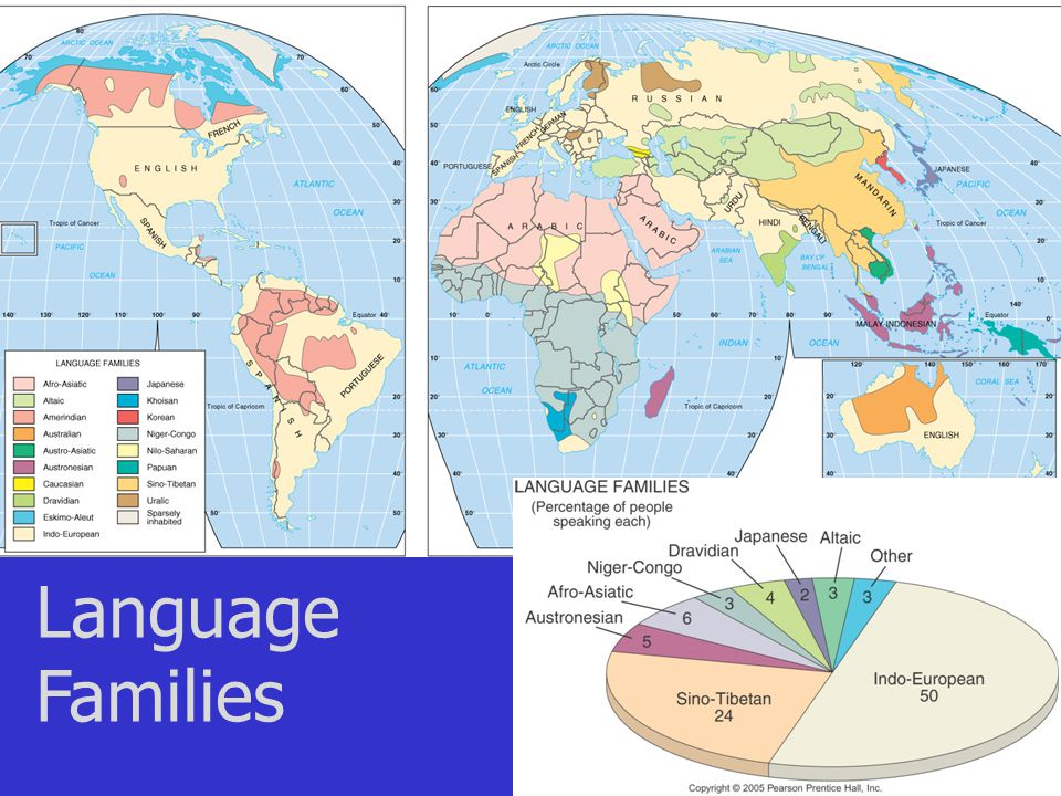Language Divisions… how we classify language.