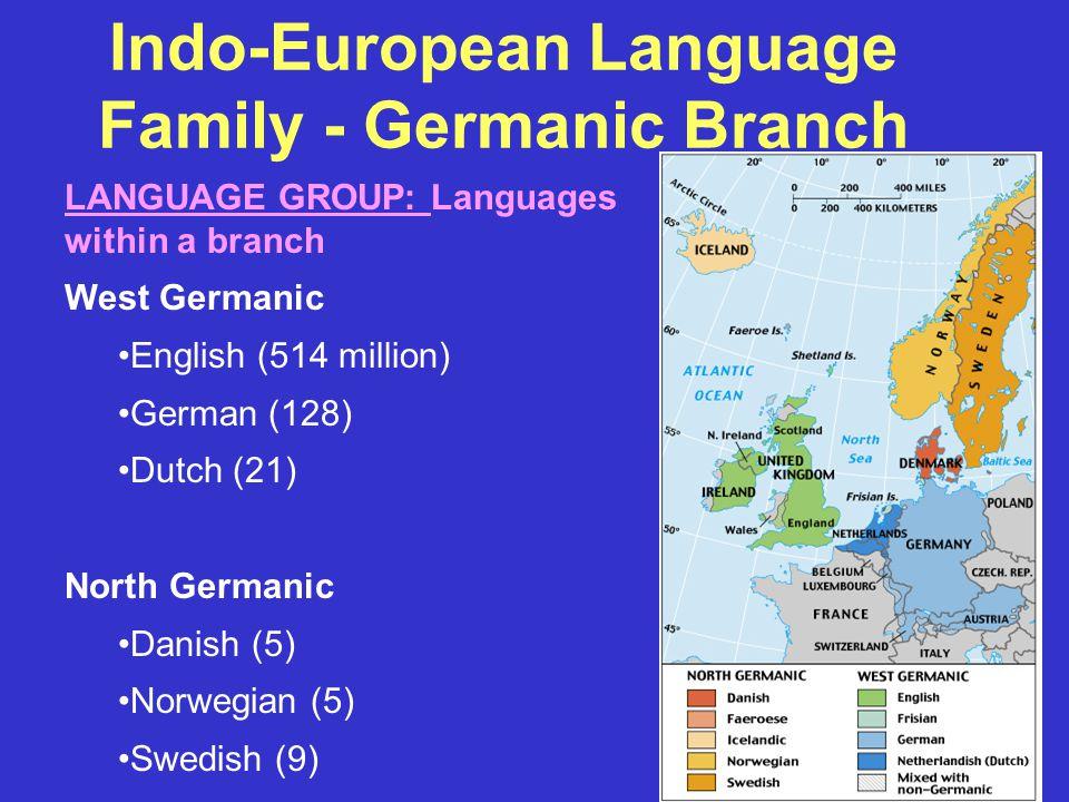 Indo-European Language Family - Germanic Branch LANGUAGE GROUP: Languages within a branch West Germanic English (514 million) German (128) Dutch (21) North Germanic Danish (5) Norwegian (5) Swedish (9)