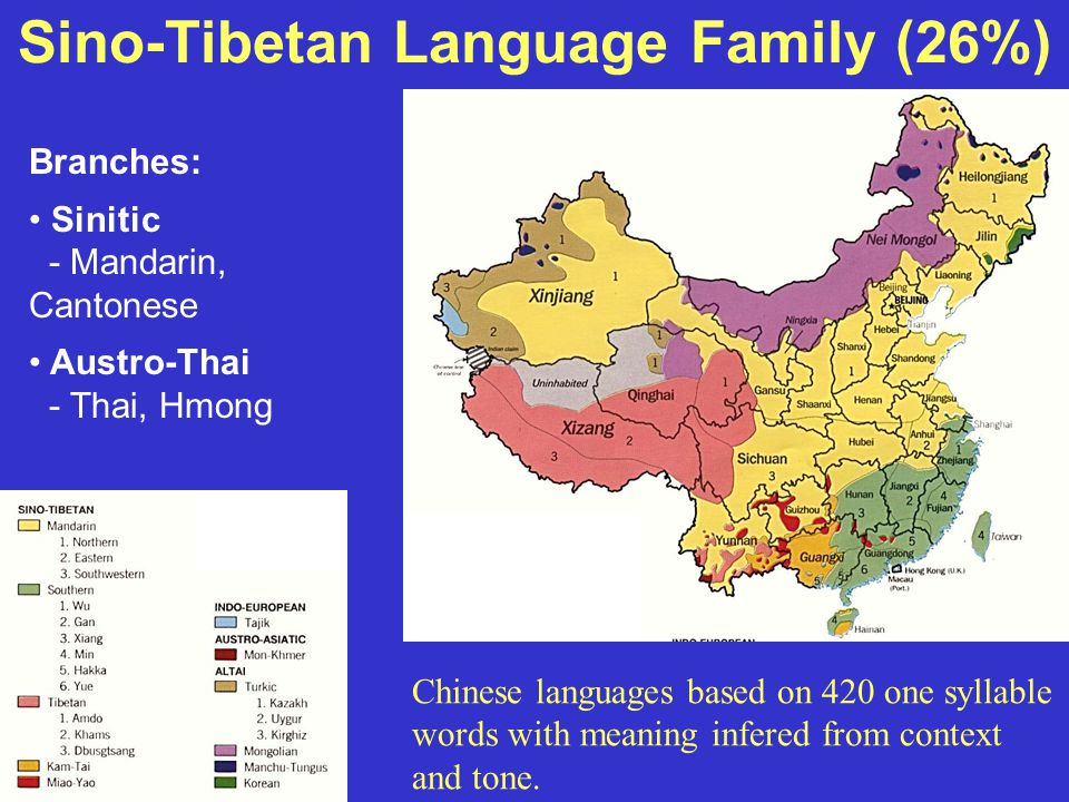 Sino-Tibetan Language Family (26%) Branches: Sinitic - Mandarin, Cantonese Austro-Thai - Thai, Hmong Chinese languages based on 420 one syllable words with meaning infered from context and tone.