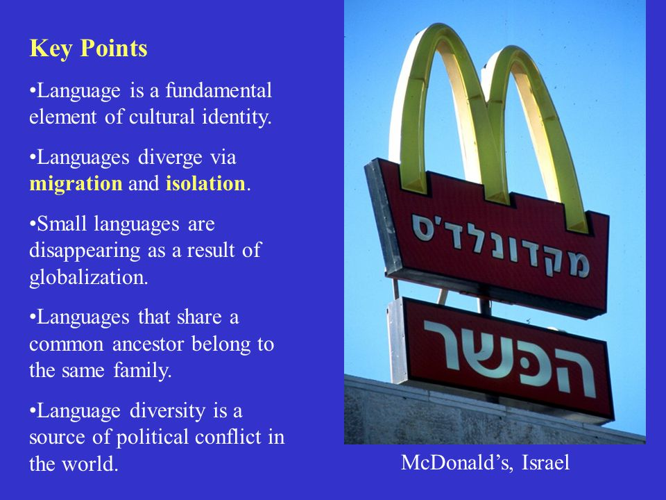 Key Points Language is a fundamental element of cultural identity.