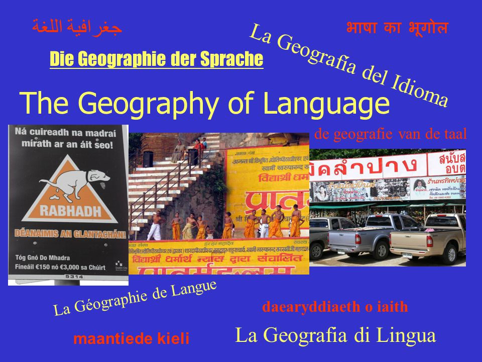 Language Overview Geographer's Perspective on Language (Language as Foundation of Culture) Linguistic Diversity Roots of Language Key Terms Language Divisions Spatial Distribution of Key Languages