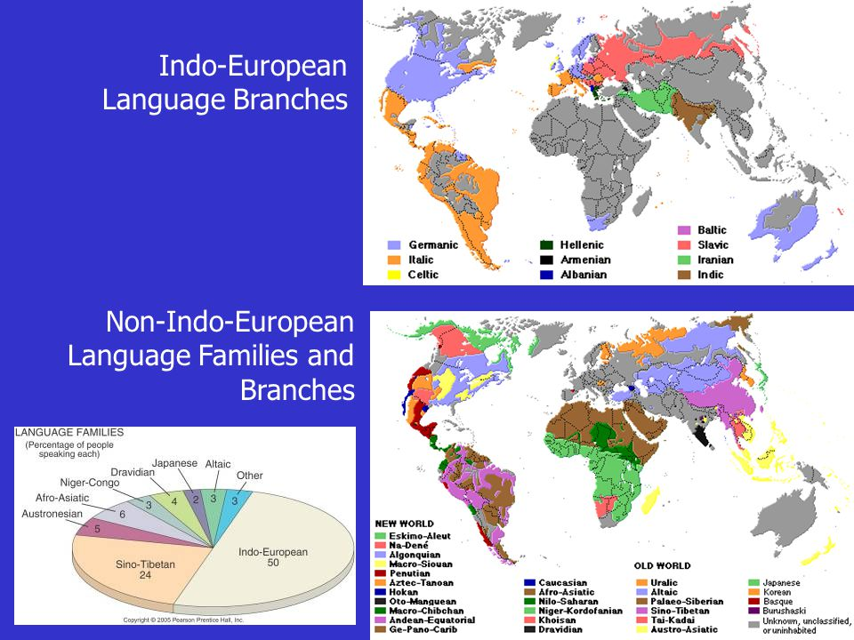 Indo-European Language Branches Non-Indo-European Language Families and Branches
