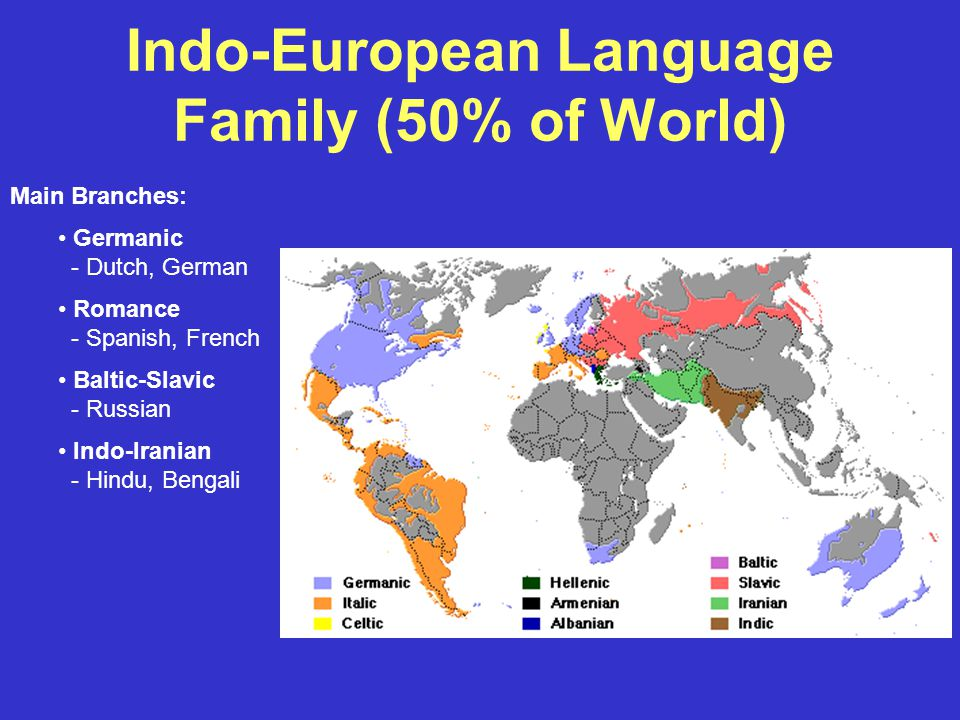 Indo-European Language Family (50% of World) Main Branches: Germanic - Dutch, German Romance - Spanish, French Baltic-Slavic - Russian Indo-Iranian - Hindu, Bengali