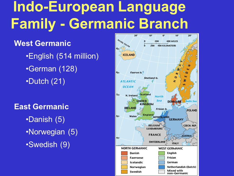 Indo-European Language Family - Germanic Branch West Germanic English (514 million) German (128) Dutch (21) East Germanic Danish (5) Norwegian (5) Swedish (9)