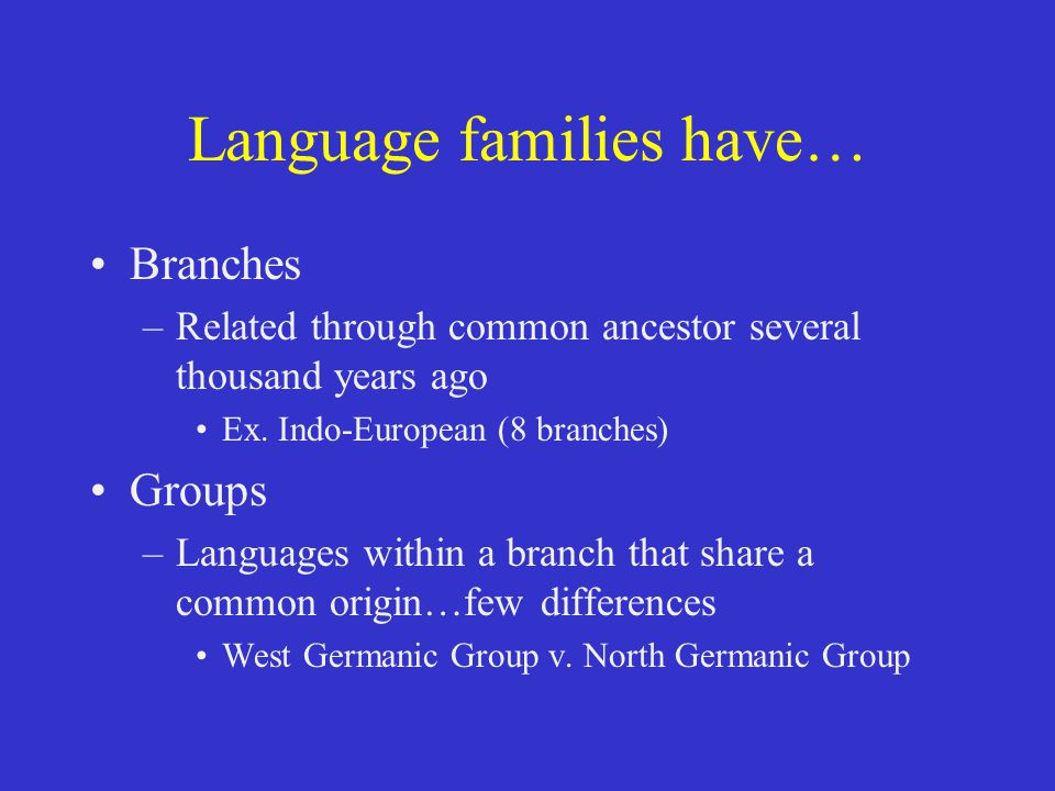 Language families have… Branches –Related through common ancestor several thousand years ago Ex. Indo-European (8 branches) Groups –Languages within a
