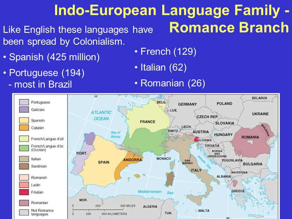 Indo-European Language Family - Romance Branch Like English these languages have been spread by Colonialism.