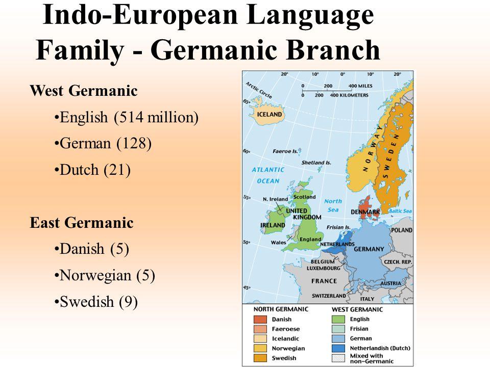 Indo-European Language Family - Germanic Branch West Germanic English (514 million) German (128) Dutch (21) East Germanic Danish (5) Norwegian (5) Swe