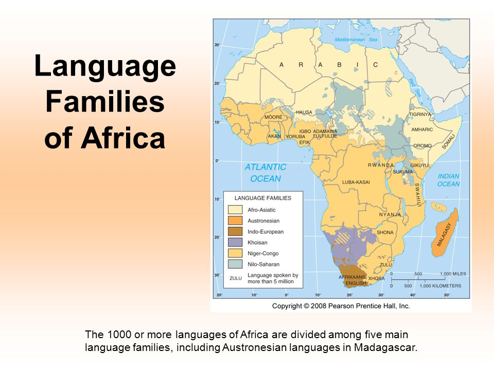 Language Families of Africa The 1000 or more languages of Africa are divided among five main language families, including Austronesian languages in Ma