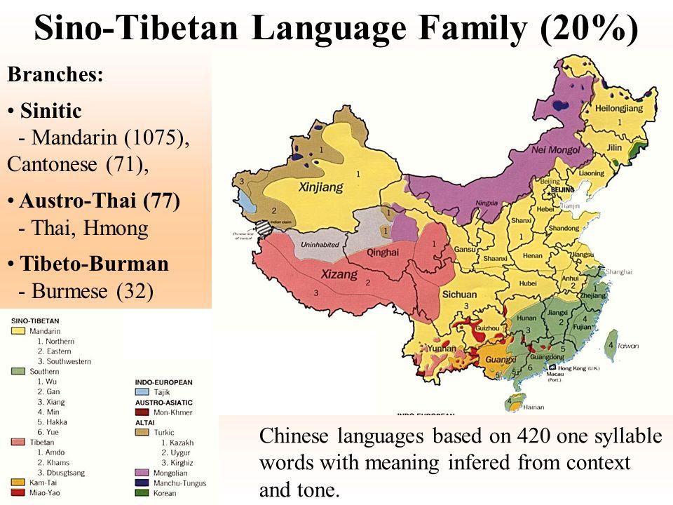 Sino-Tibetan Language Family (20%) Branches: Sinitic - Mandarin (1075), Cantonese (71), Austro-Thai (77) - Thai, Hmong Tibeto-Burman - Burmese (32) Ch