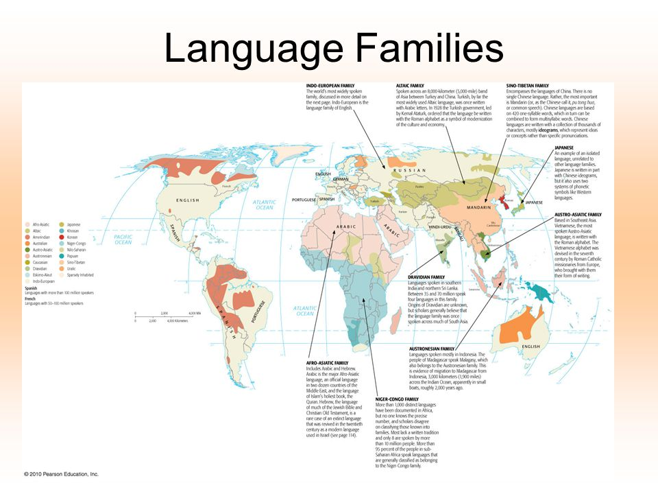 Dialect- a regional variation of a language distinguished by a distinctive vocab, spelling, and pronunciation.