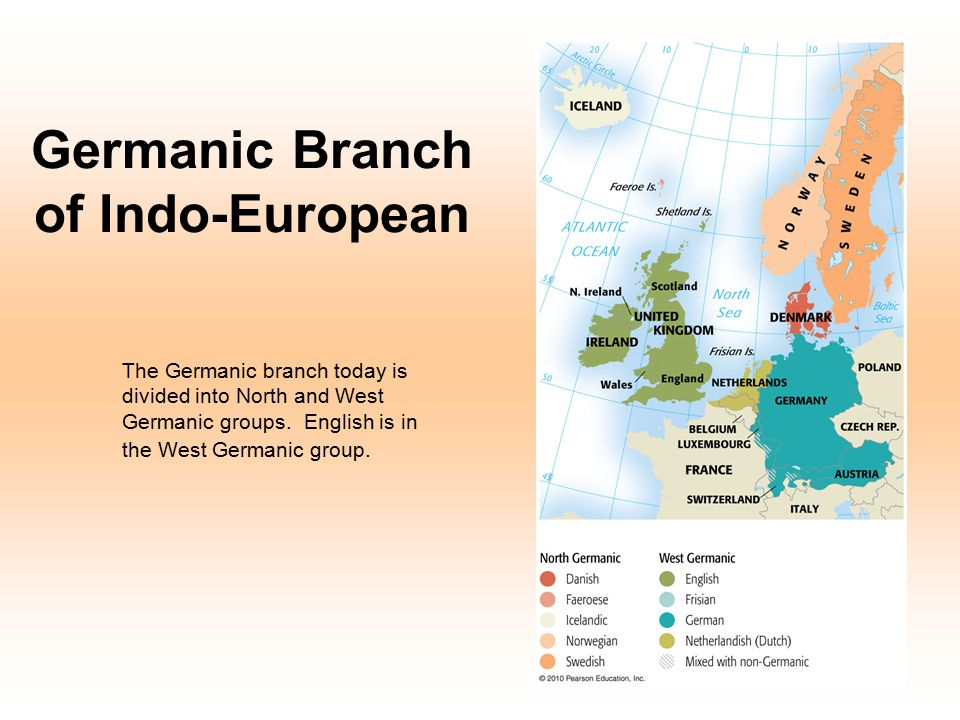Germanic Branch of Indo-European The Germanic branch today is divided into North and West Germanic groups. English is in the West Germanic group.