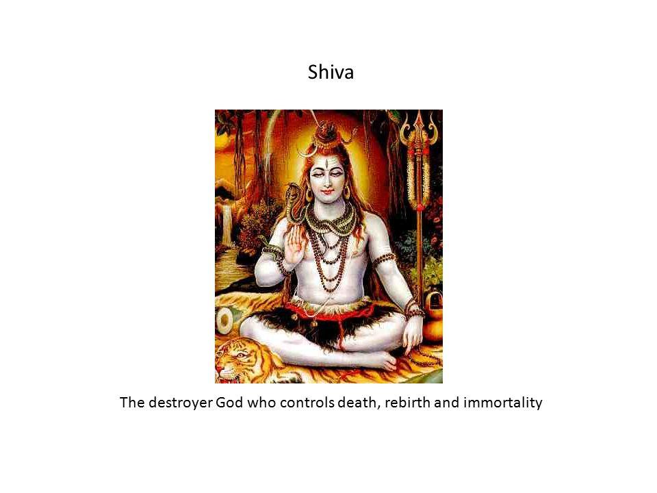 Krishna Vishnu's avatar on Earth