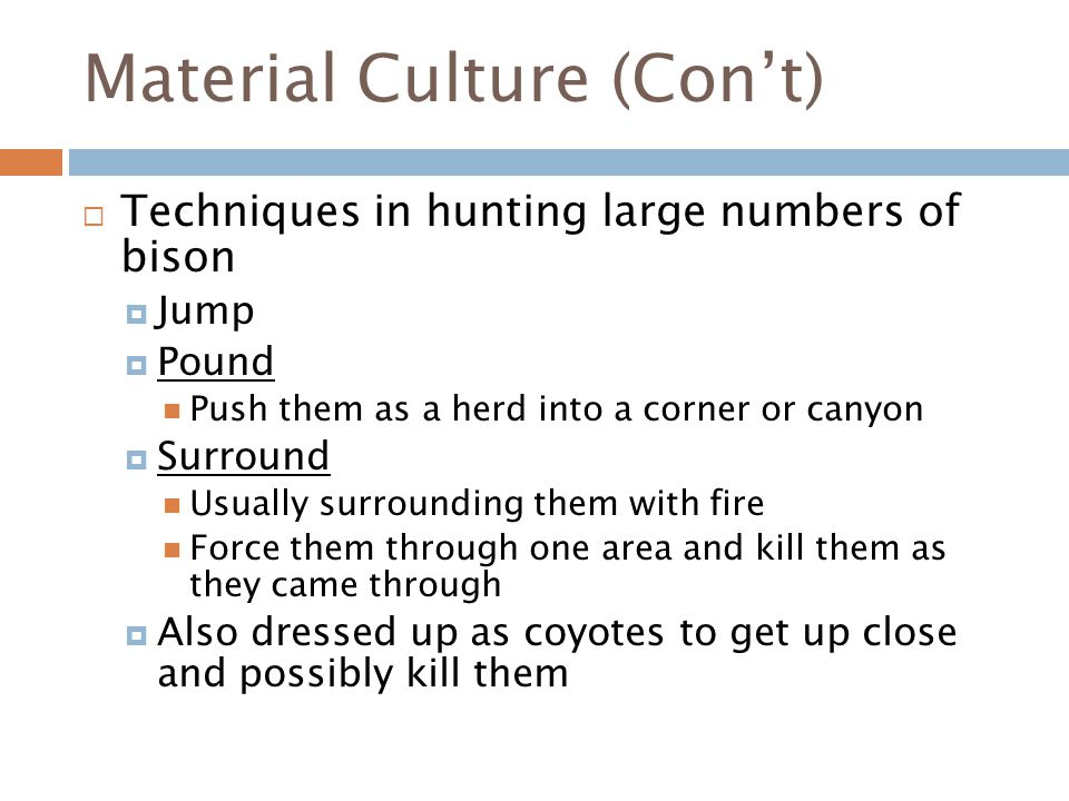 Material Culture (Con't)  Techniques in hunting large numbers of bison  Jump  Pound Push them as a herd into a corner or canyon  Surround Usually surrounding them with fire Force them through one area and kill them as they came through  Also dressed up as coyotes to get up close and possibly kill them