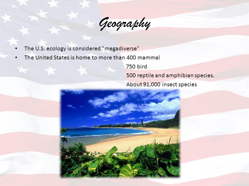 Geography The U.S. ecology is considered