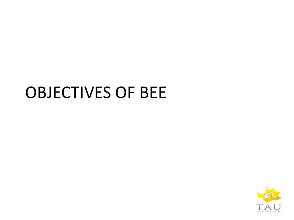 OBJECTIVES OF BEE