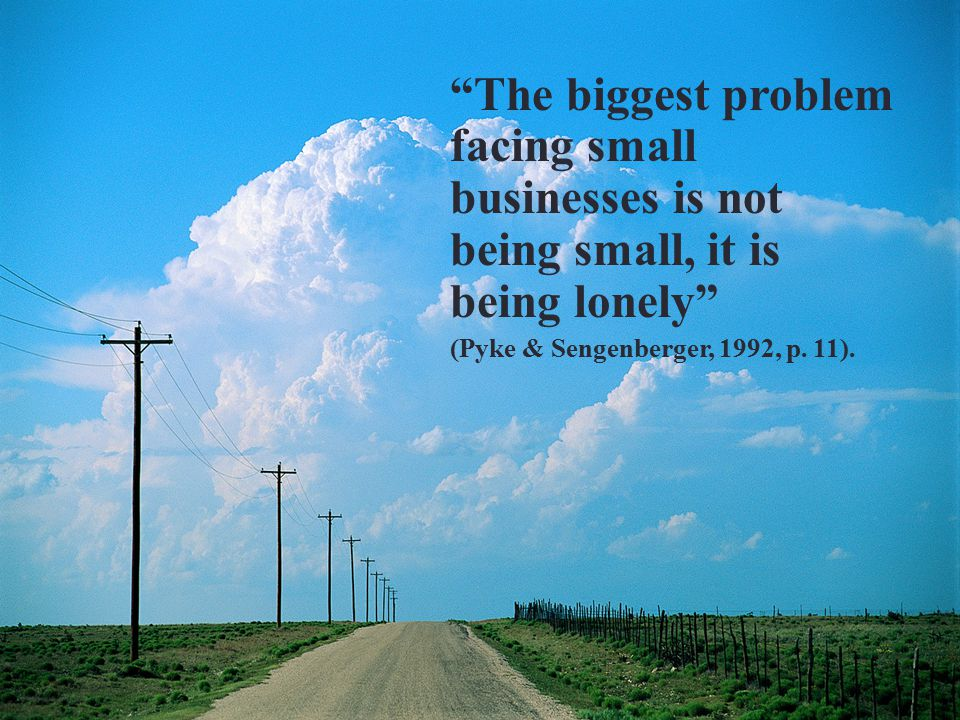 8 The biggest problem facing small businesses is not being small, it is being lonely (Pyke & Sengenberger, 1992, p.