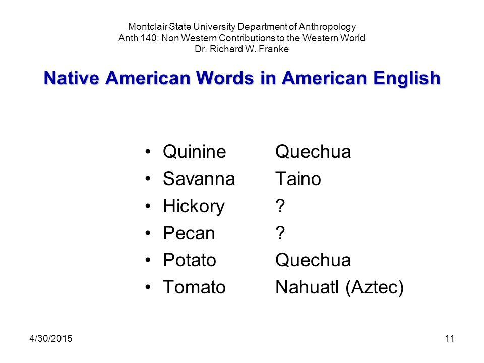 4/30/201511 Native American Words in American English Montclair State University Department of Anthropology Anth 140: Non Western Contributions to the Western World Dr.