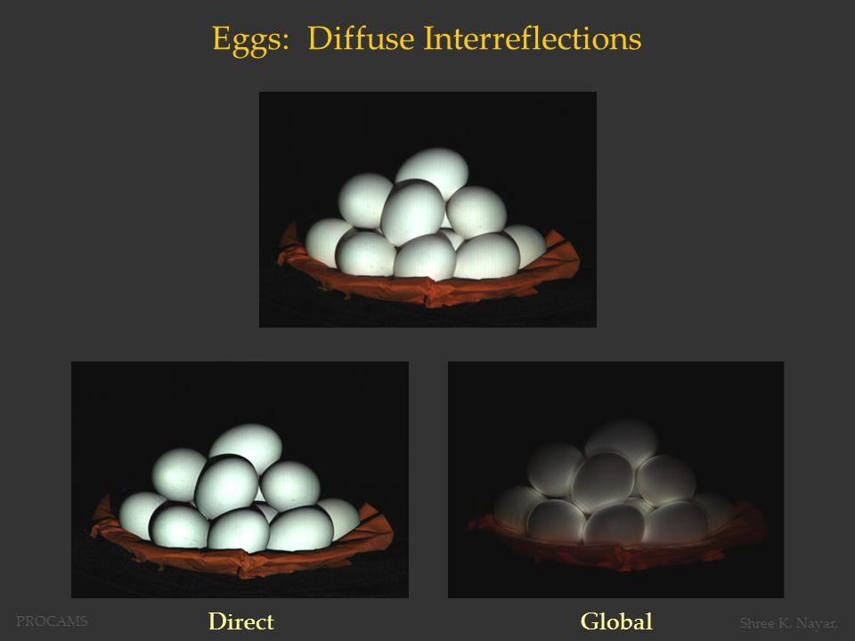 Eggs: Diffuse Interreflections DirectGlobal PROCAMS Shree K. Nayar,