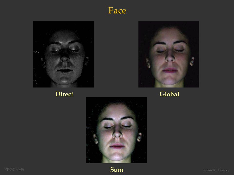 Face DirectGlobal Sum PROCAMS Shree K. Nayar,