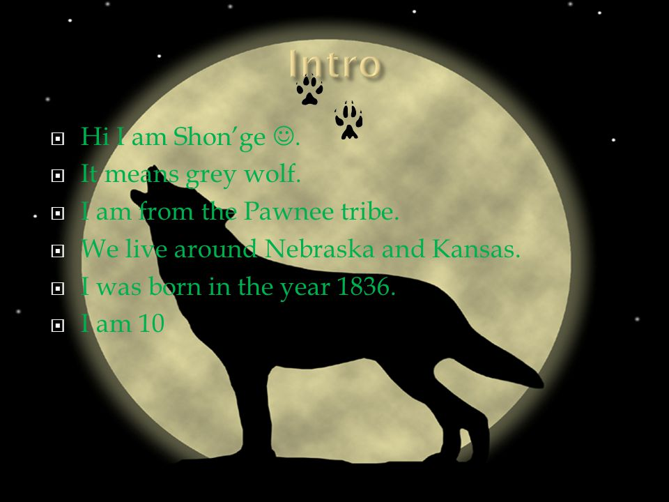  Hi I am Shon'ge.  It means grey wolf.  I am from the Pawnee tribe.