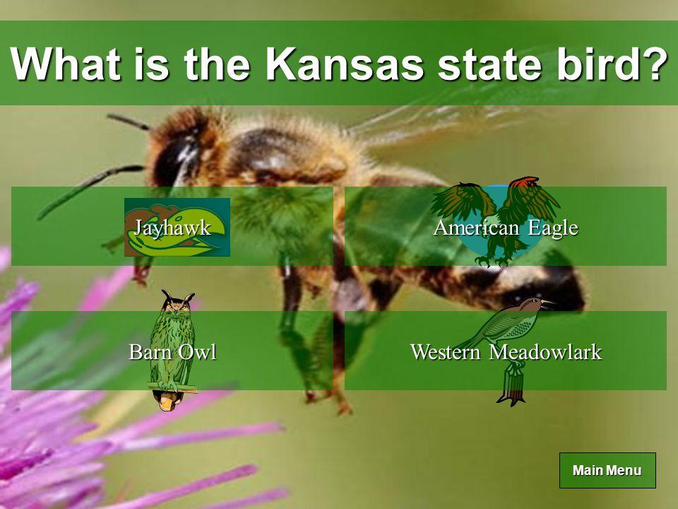 Main Menu Main Menu What is the Kansas state tree.