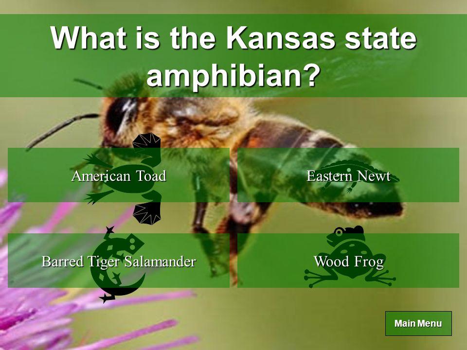 Main Menu Main Menu What is the Kansas state reptile.