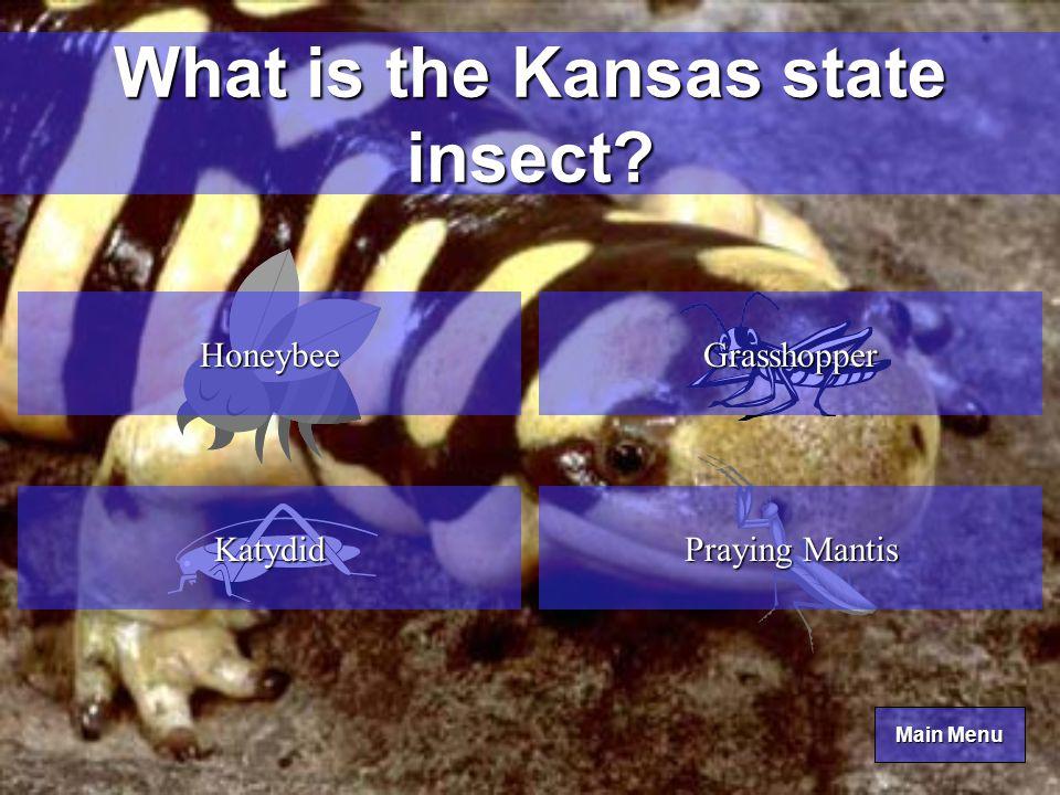 Main Menu Main Menu What is the Kansas state amphibian.