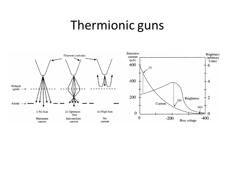 Thermionic guns