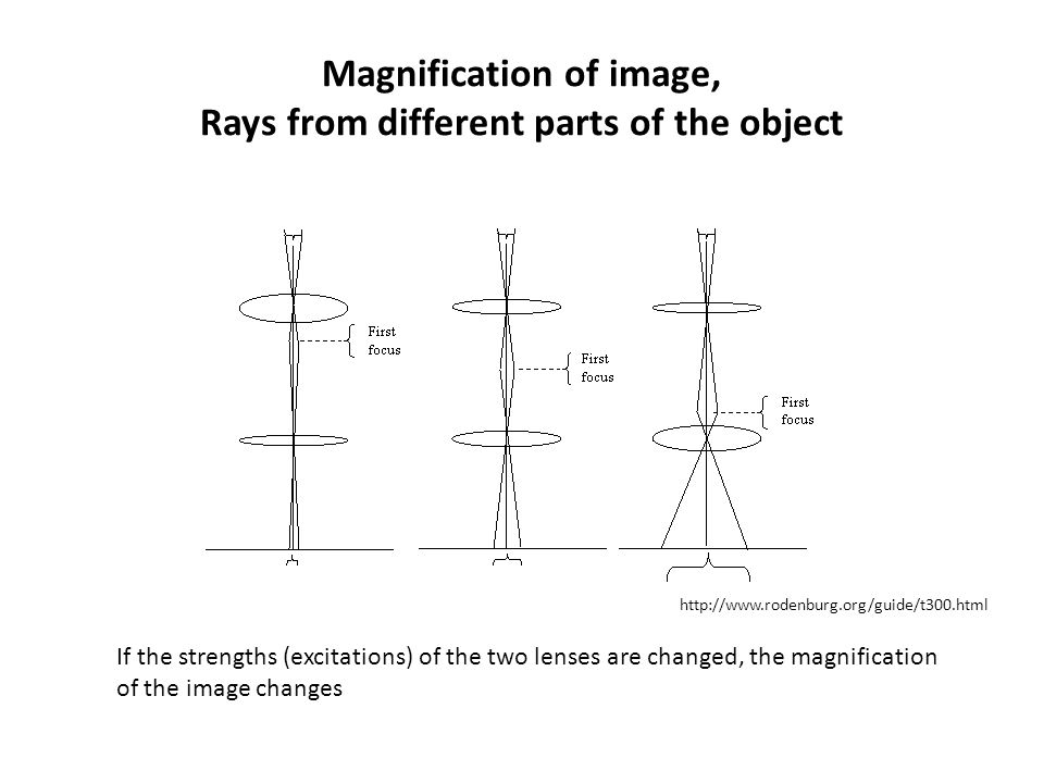 Magnification of image, Rays from different parts of the object If the strengths (excitations) of the two lenses are changed, the magnification of the image changes http://www.rodenburg.org/guide/t300.html