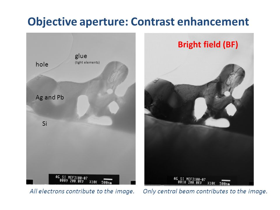 BF image Objective aperture Objective aperture: Contrast enhancement All electrons contribute to the image. Si Ag and Pb glue (light elements) hole On