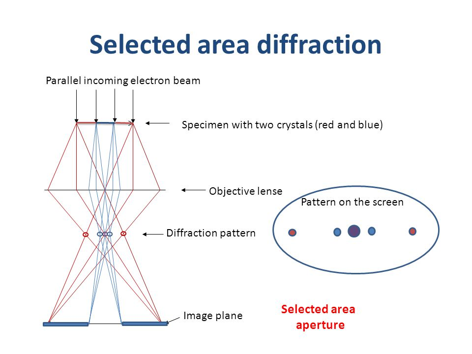 Selected area diffraction Objective lense Diffraction pattern Image plane Specimen with two crystals (red and blue) Parallel incoming electron beam Se