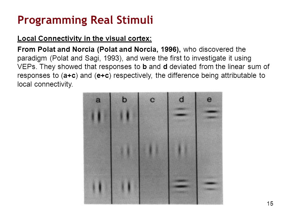 15 Programming Real Stimuli Local Connectivity in the visual cortex: From Polat and Norcia (Polat and Norcia, 1996), who discovered the paradigm (Polat and Sagi, 1993), and were the first to investigate it using VEPs.