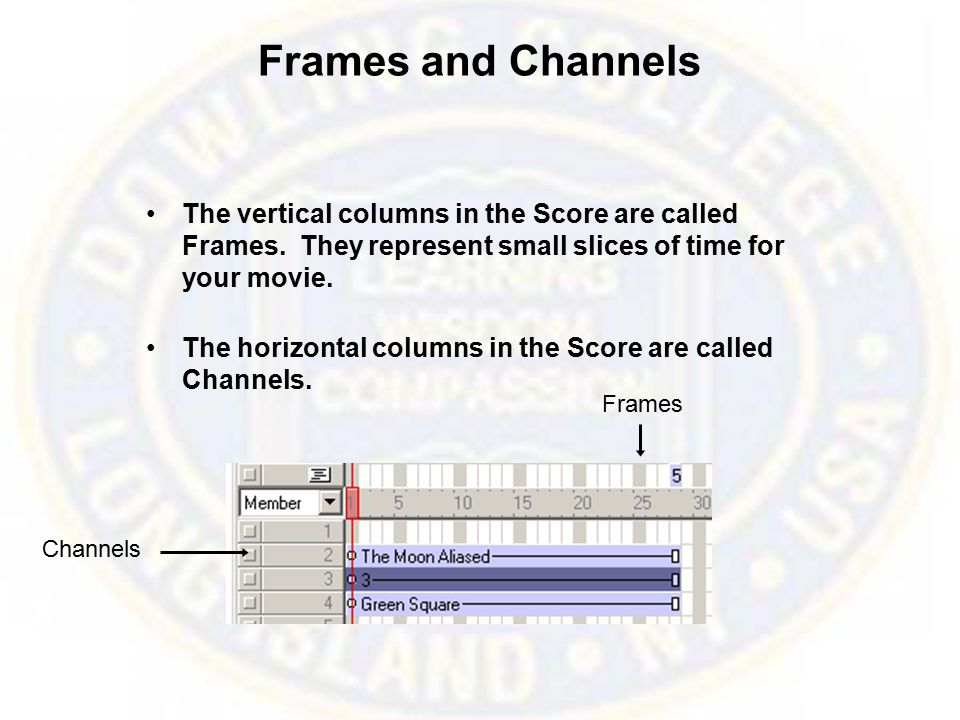 Frames and Channels The vertical columns in the Score are called Frames.