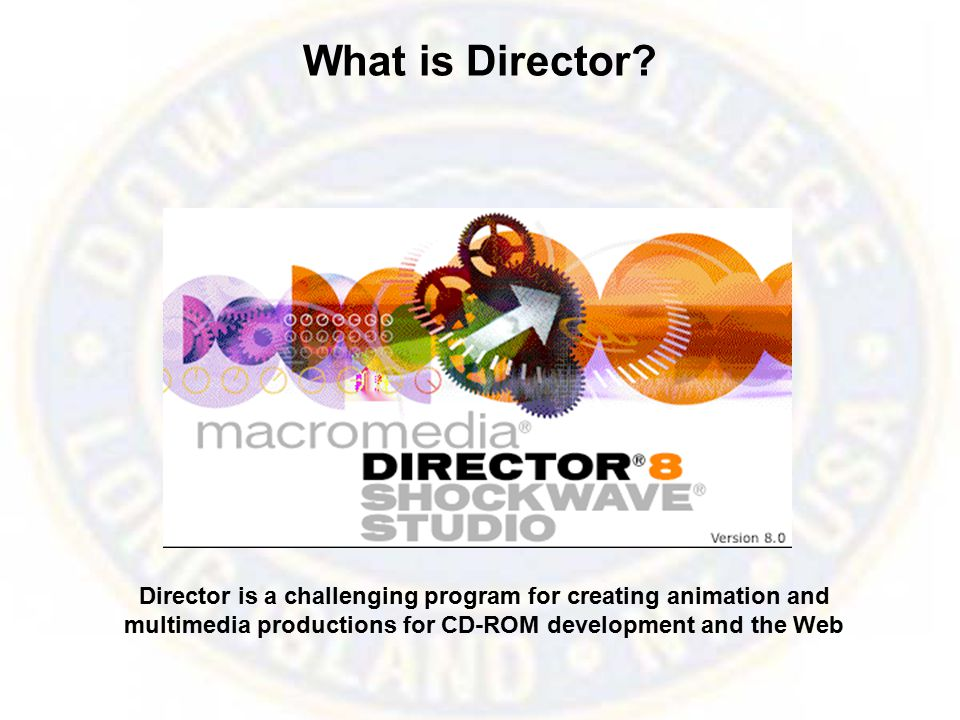 What is Director.