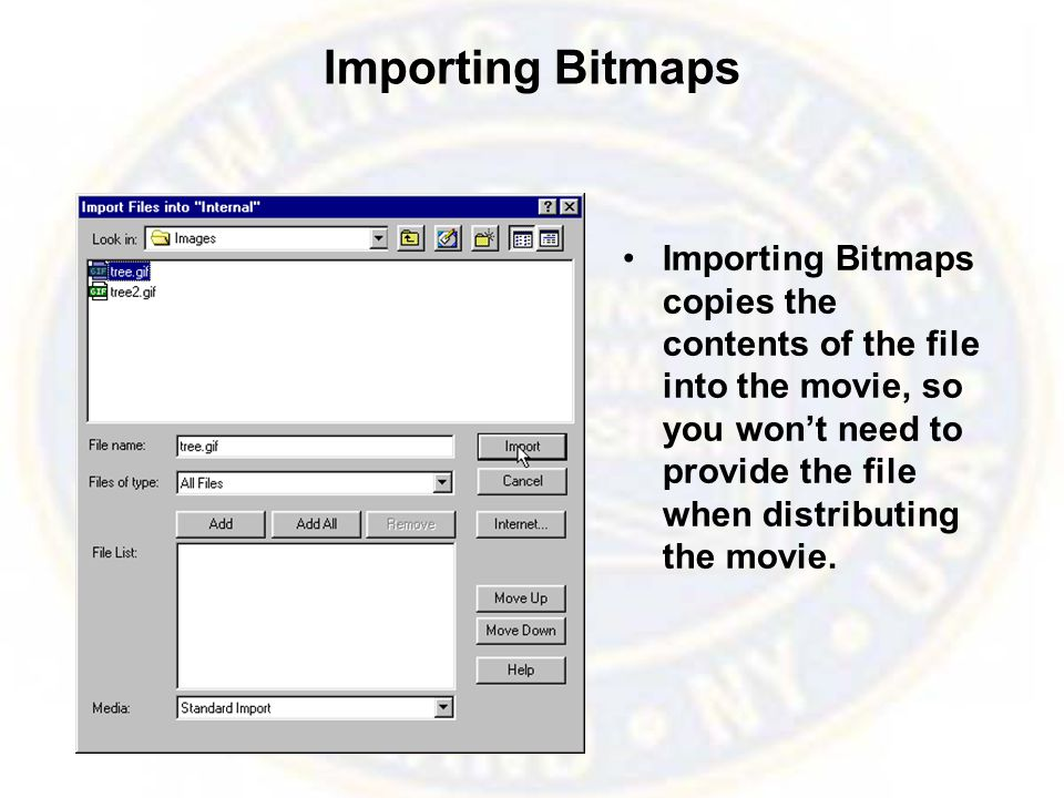 Importing Bitmaps Importing Bitmaps copies the contents of the file into the movie, so you won't need to provide the file when distributing the movie.