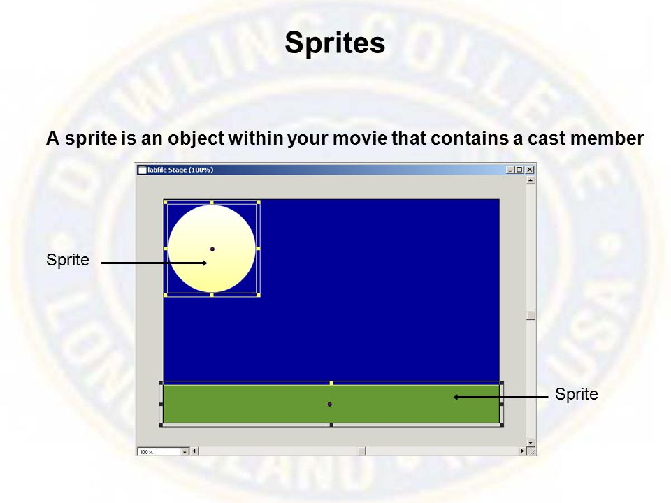 Adding Cast Members to the Score Adding the Cast to the Score begins the development process of your Interactive movie.